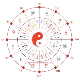 Horloge circadienne en énergétique chinoise